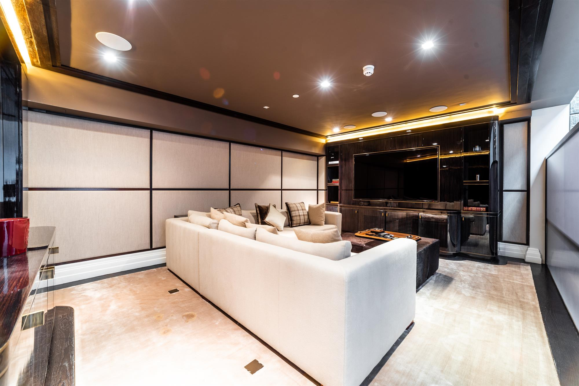 Media Room/Cineam